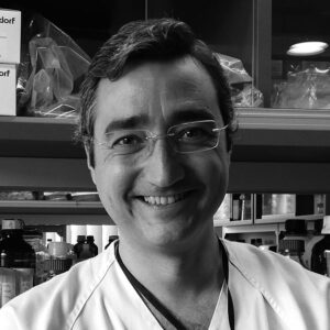 Fernando Gutiérrez Nicolás