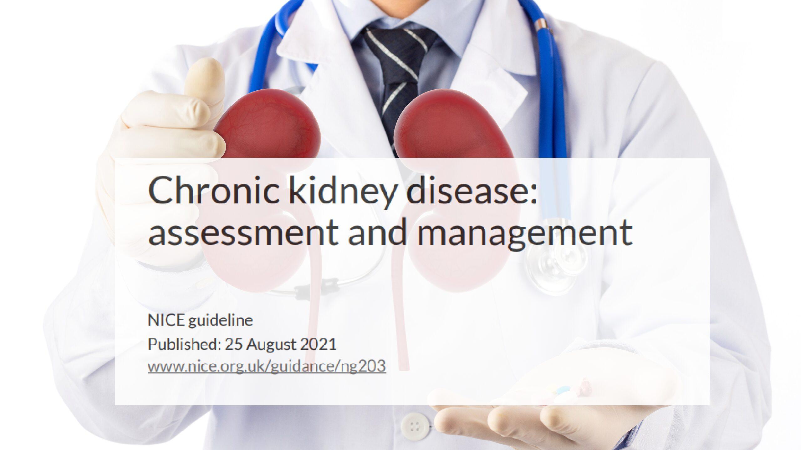 Actualización NICE: Guía sobre la enfermedad renal crónica: evaluación y manejo.